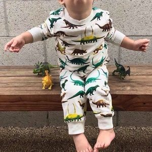 Other - Cool Dinosaur Print Sweater And Sweats Suit